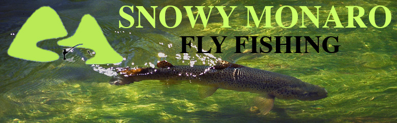fly fishing, guiding, instruction snowy mountains and monaro
