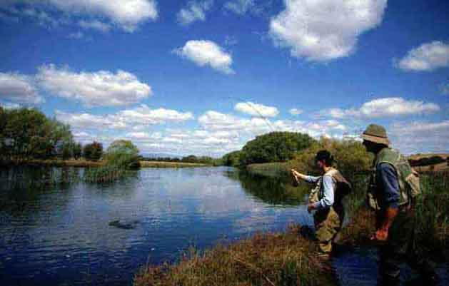 Fly fishing tuition and instruction